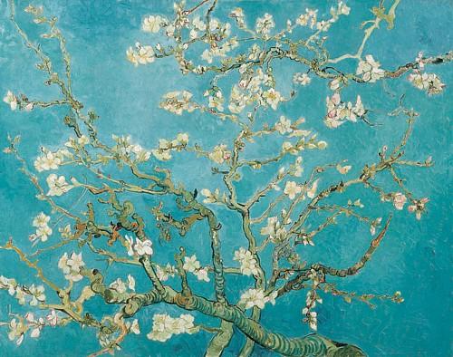 Almond blossoms van gogh