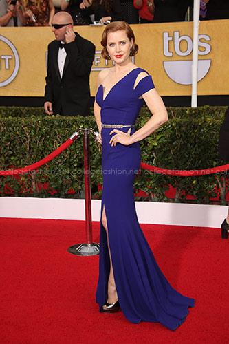 Amy Adams inAntonio Berardi at the 2014 SAG Awards