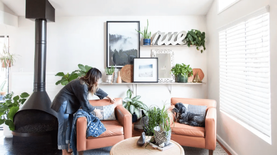 Apartment Therapy plants