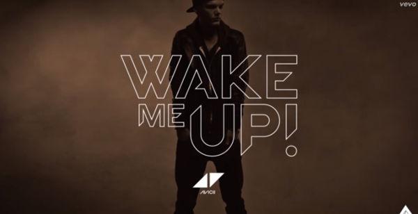 Avicii wake me up cover