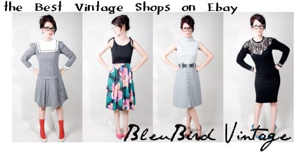 bleubird vintage