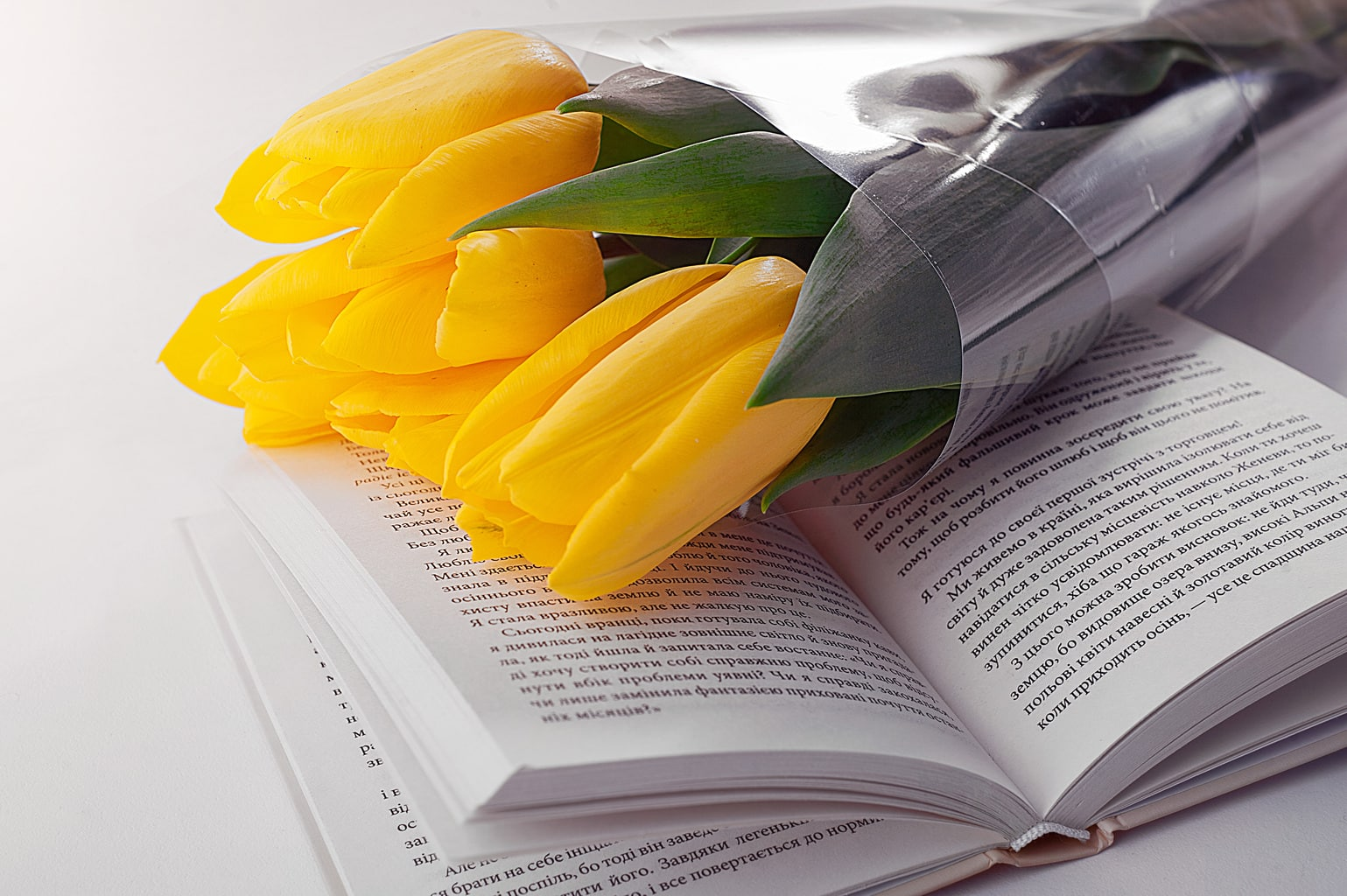 Summer book recommendations for different personality types - picture of book with tulips on top