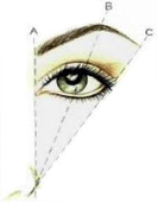 brow diagram
