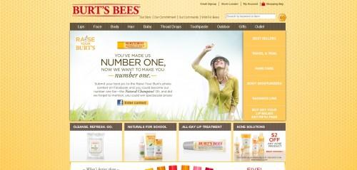 Burts-Bees-website