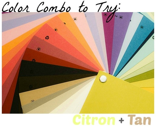 Color combo to try citron and tan