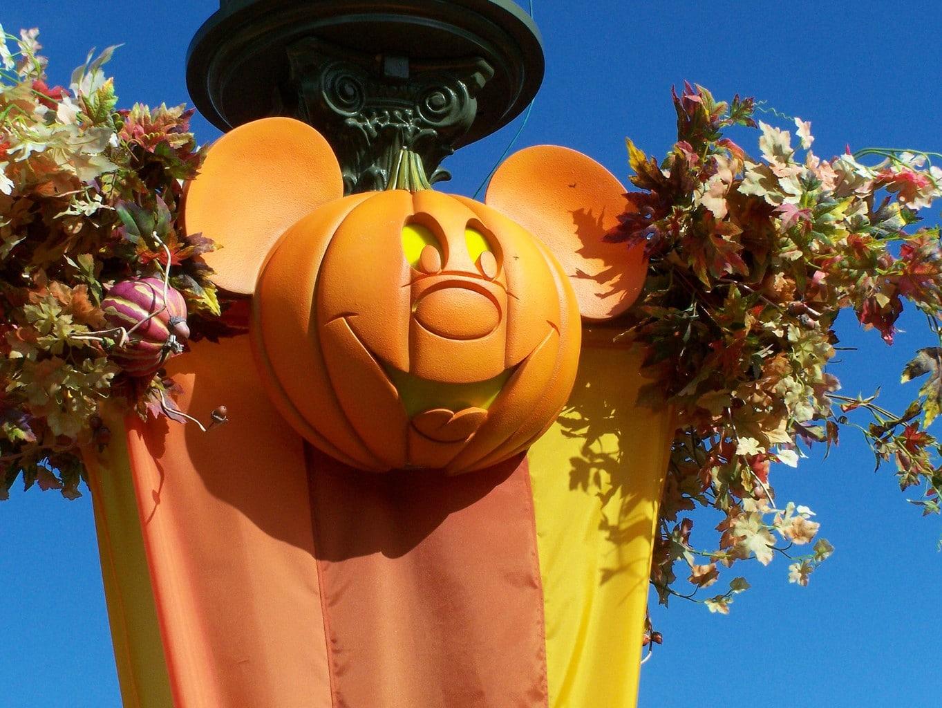 Disney in the fall
