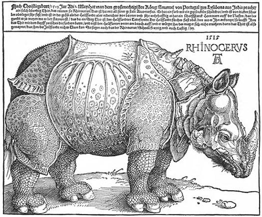 """Albrecht Dürer's """"Rhinoceros"""""""