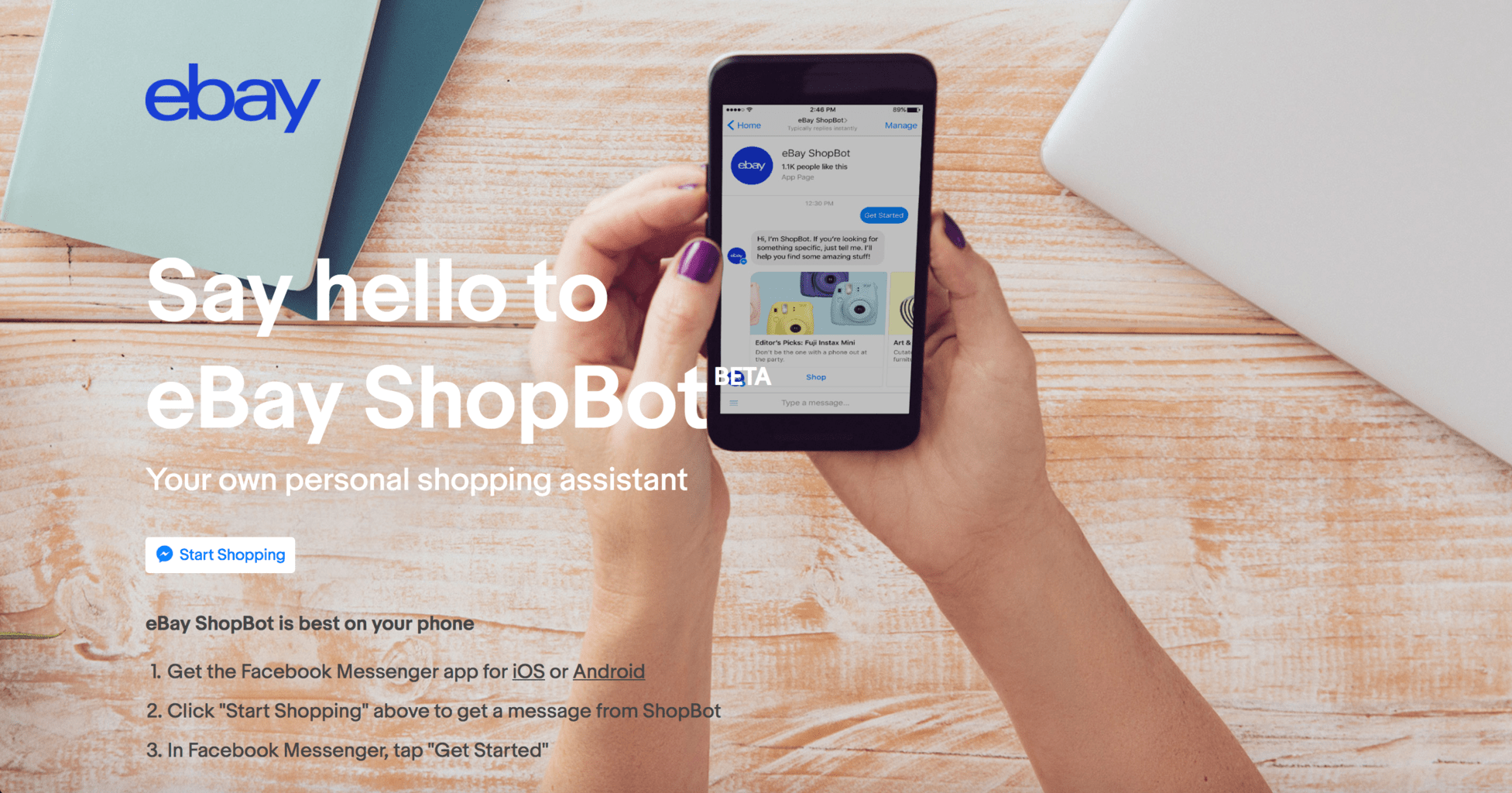 eBay shopbot screenshot