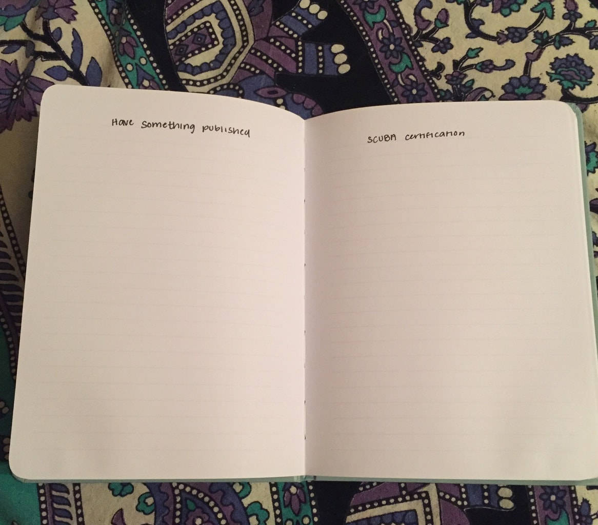 Empty pages of journal - how to make your own Adventure Book like the movie up