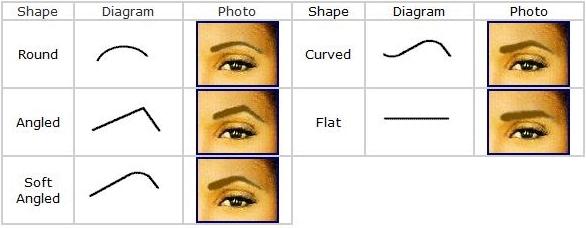 Eyebrow Shape Chart