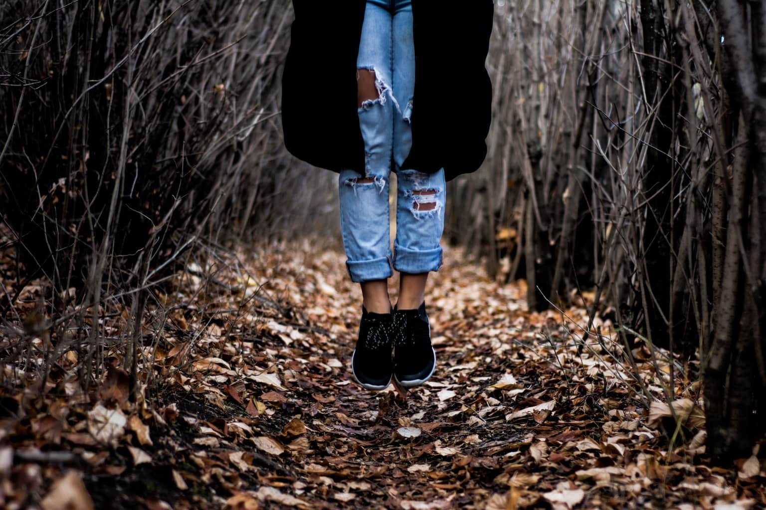 Fall trends on campus