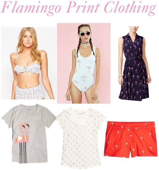 Flamingo print clothing