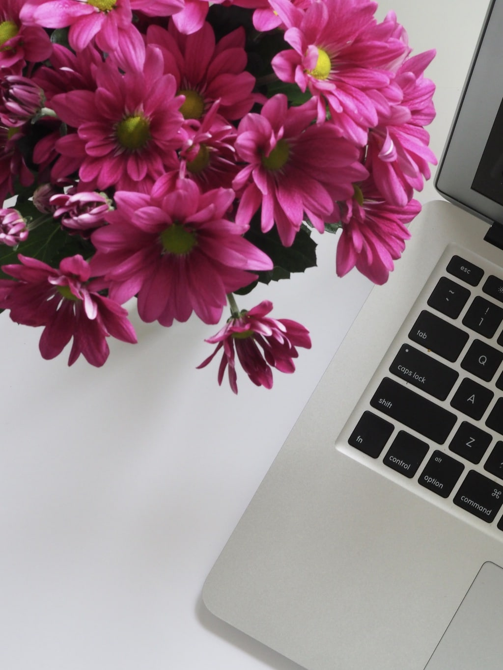 Flowers next to a laptop computer