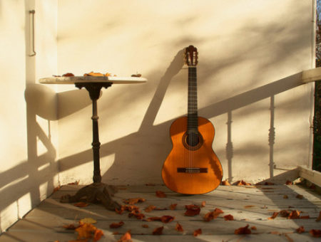 guitar and leaves