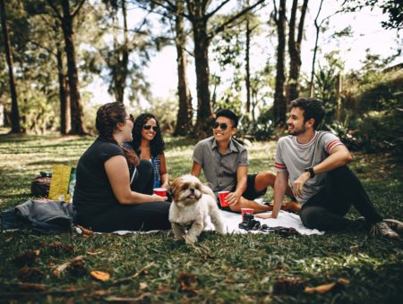 Four friends in the park with a dog eating a picnic
