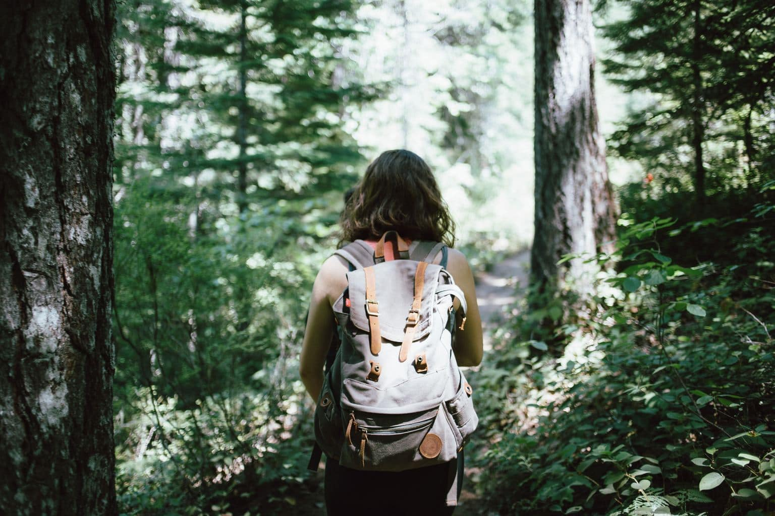 Lady Hiking Through the Forest