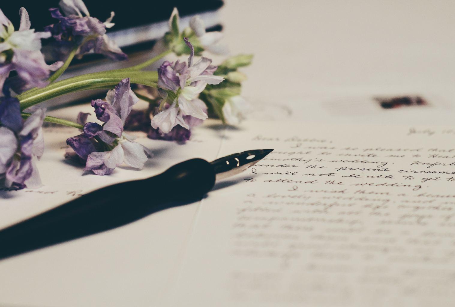 Journal entry in script