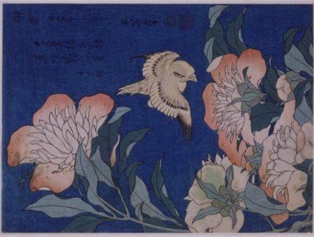"Katsushika hokusai's ""canary and peony"""