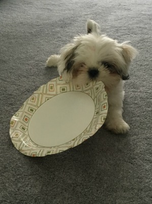 Minnie with a plate