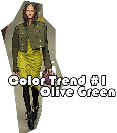 Fall 2010 color trend: olive green
