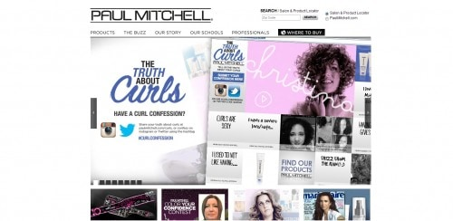 Paul-Mitchell-website