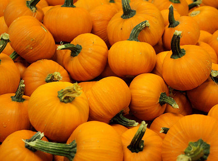 Pumpkins-Header