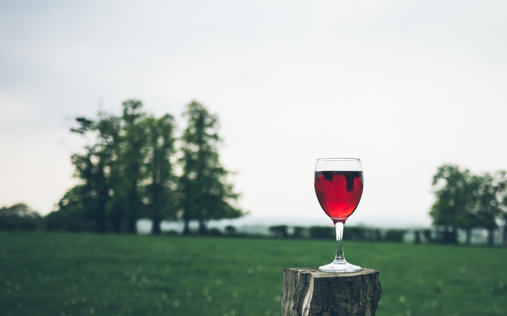 red wine with trees in background