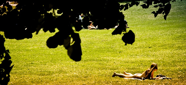 College student laying out in the sun wearing a bikini on a lawn