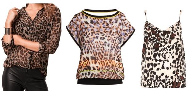 Leopard print top examples