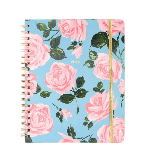 Best 2018 planners and agendas: Ban.do blue and pink rose print daily planner