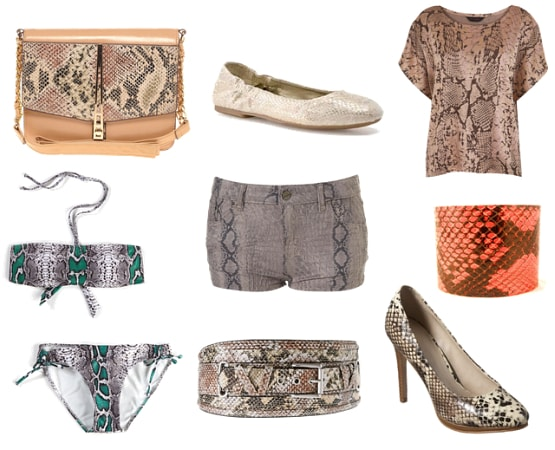Snake print clothes and accessories