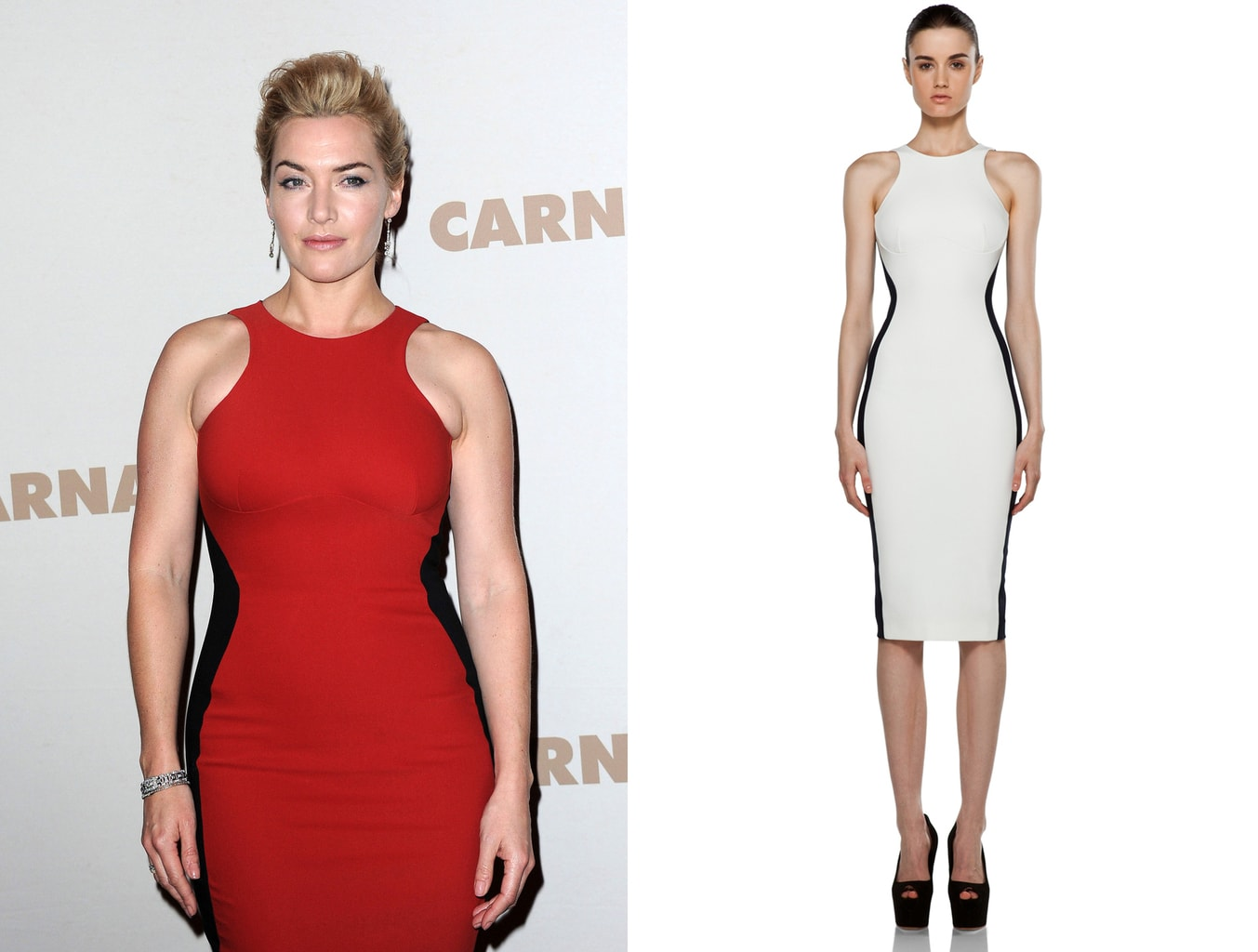 Stella McCartney Miracle Dress -- the Octavia dress seen on Kate Winslet and on a model