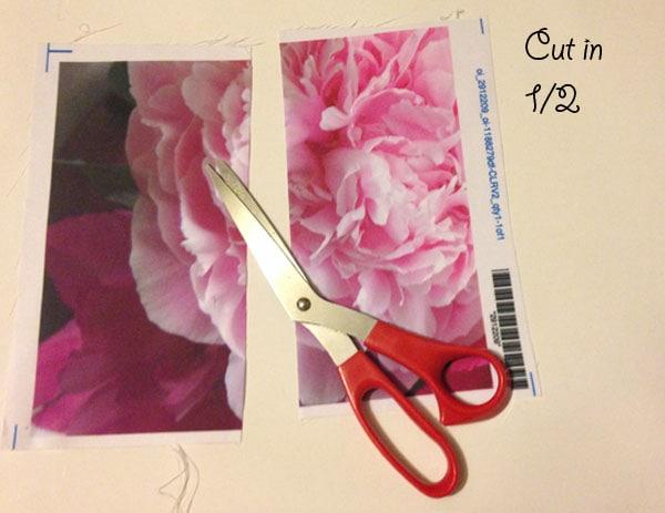 Step 2.1 diy custom bow