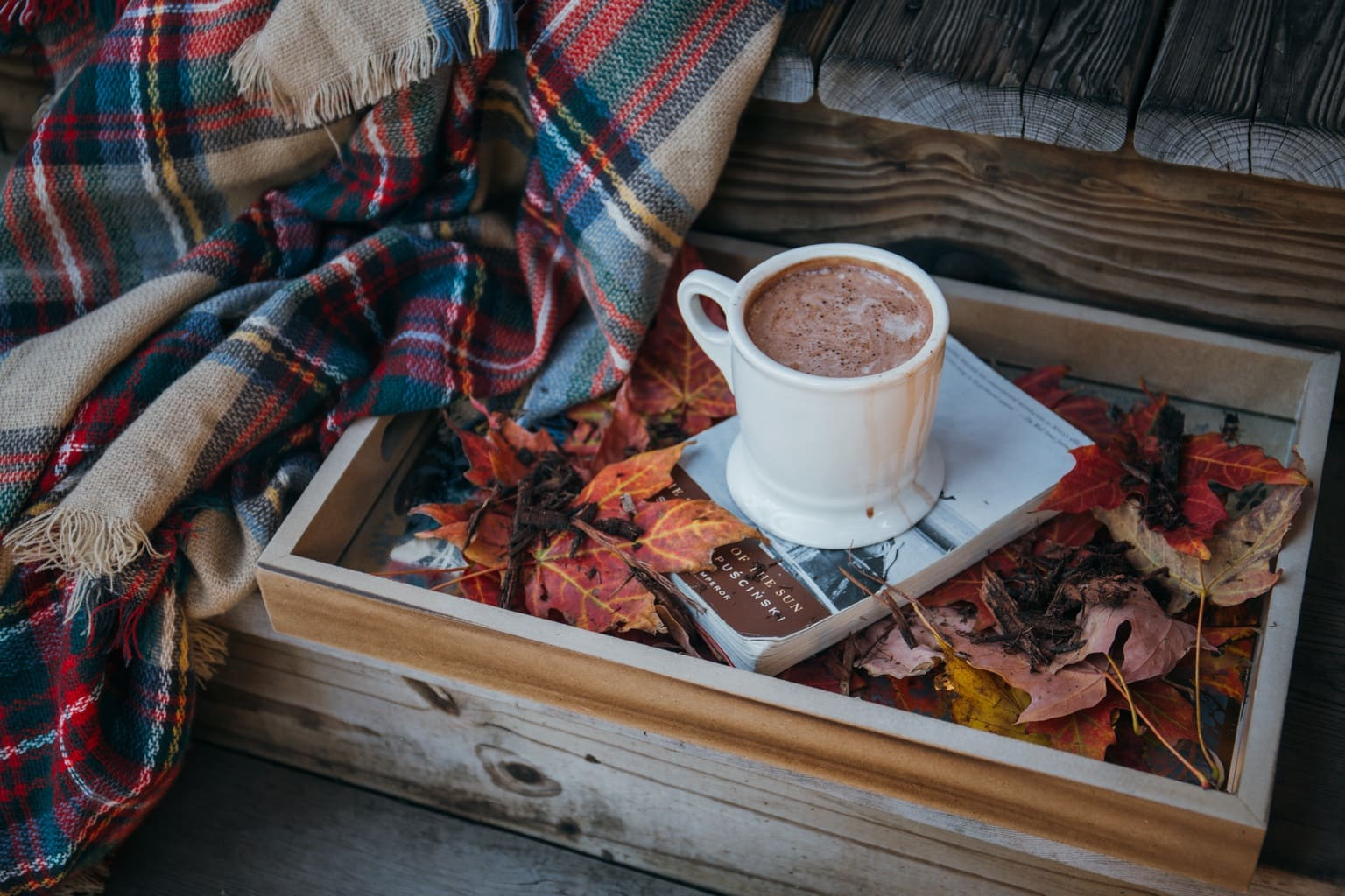 Hot chocolate on book with leaves and plaid blanket