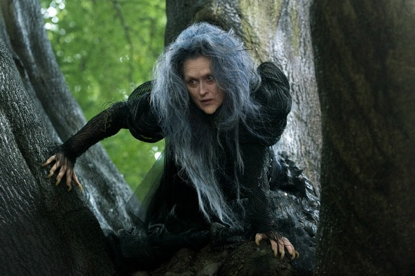 The Witch Into the Woods