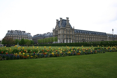 Flowers at the Jardin de Tuileries in Paris