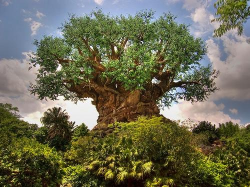 Walt Disney World's Animal Kingdom - Tree of Life