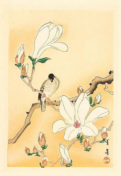 Watanabe Shōtei Bird and Magnolia