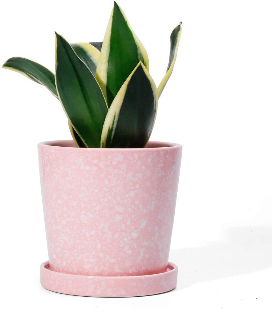 Cutest dorm room decorations - pink planter