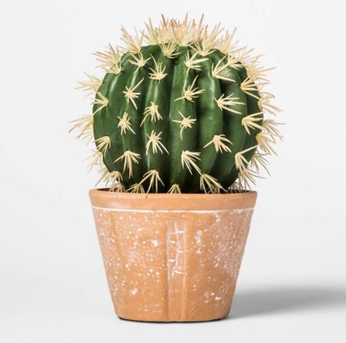 Faux cactus decoration.