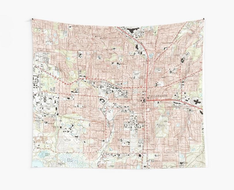 State decor - Florida tapestry.