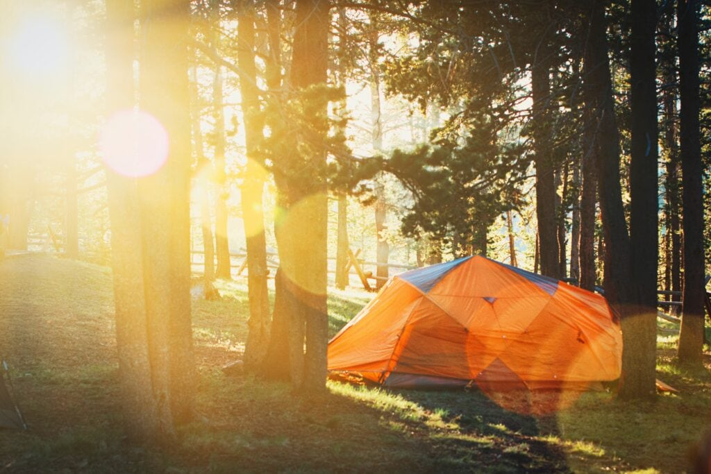 How to travel in college - go on a trip with a club. Photo of a Campsite with sun shining through trees.