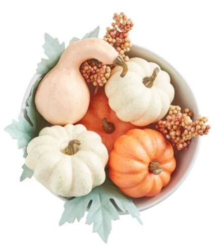 How to decorate your dorm for fall: Gourds in a bowl