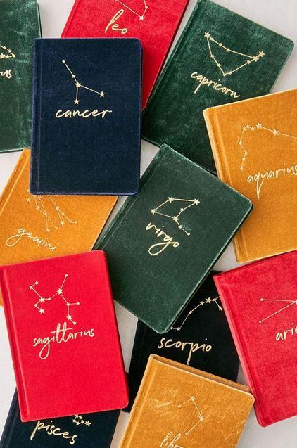 Velvet zodiac notebooks.