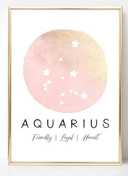Pink glitter zodiac print.