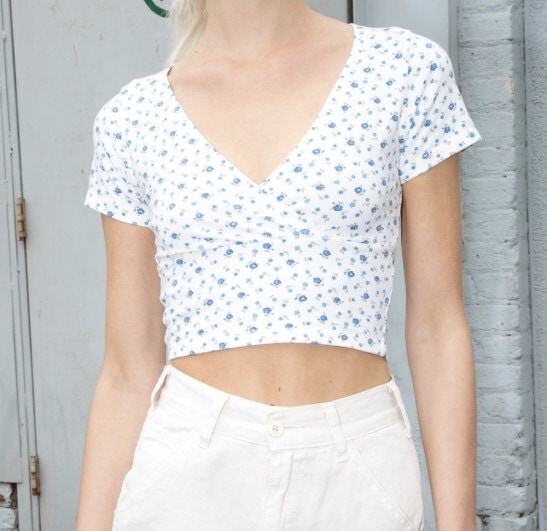 Product photo of a top from Brandy Melville