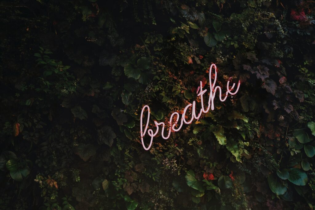 Things I've learned in college - breathing and taking care of myself. pink breathe neon sign in leaves