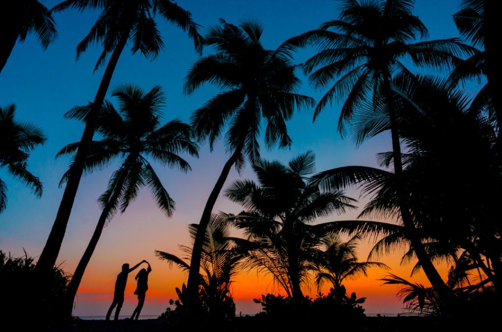Summertime beach scene at night